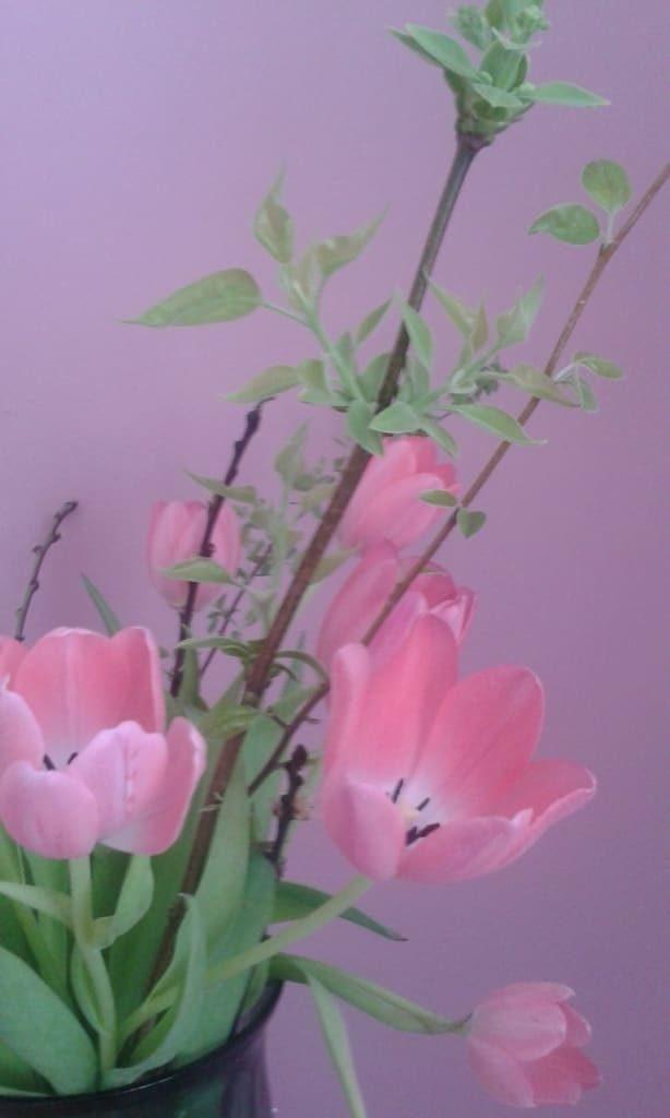 In einem Land wo Blumen fliegen